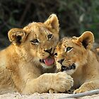 Cuddly cubs by jozi1