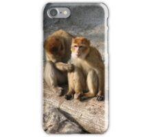 Monkeys iPhone Case/Skin