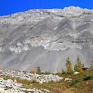 Highwood panorama III by zumi