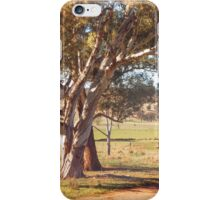 The track winding back iPhone Case/Skin