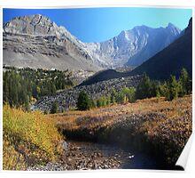 Arethusa creek and peaks Poster