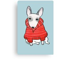 English Bull Terrier Wearing Red Chunky Knit Canvas Print