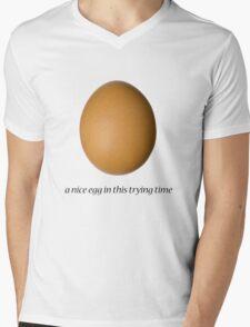 a nice egg Mens V-Neck T-Shirt