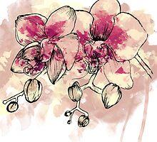 Orchid by Aleksandra Kurczewska