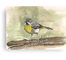 Grey Wagtail Canvas Print