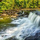 Aysgarth Falls by Tony Shaw