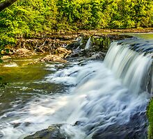 Aysgarth Falls by Tony Shaw