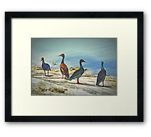 Psychedelic Ducks Framed Print