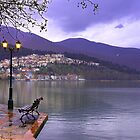 Kastoria Town near lake. (Greece) by Tania Koleska