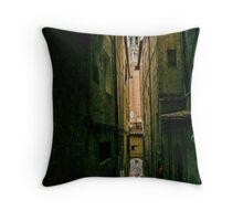 Siena passage Throw Pillow