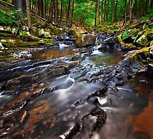 Diagonal Trout Stream by Nazareth