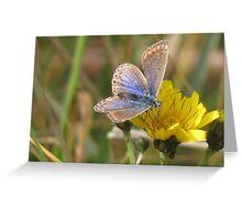 Blue Beauty Greeting Card