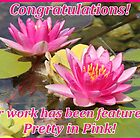 Pretty in Pink Feature Banner by hummingbirds