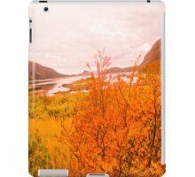 Orange at its best. iPad Case/Skin