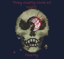 Terraria - They mostly come at night. Mostly.  by cosmicerr0r