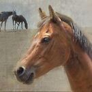 Horse Portrait  by Eve Parry