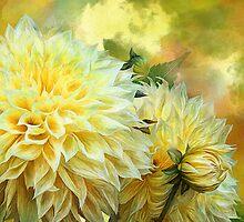 Yellow Dahlias by Carol  Cavalaris