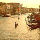 Venice, View from the Rialto Bridge by Joanna Rice