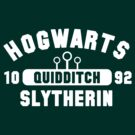 Quidditch- Slytherin by kreckmann
