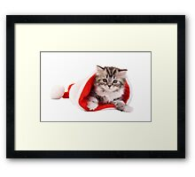 Happy Christmas with kitty! Framed Print