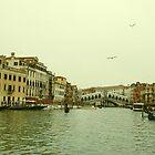 The Rialto Bridge, Venice by Joanna Rice