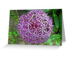 Spikey Lilac Garden Ball Greeting Card
