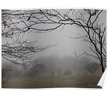 Fog Filled Paddock Poster