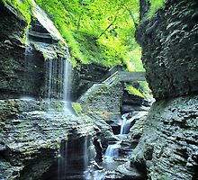 Watkin's Glen Waterfall by picsbytabitha