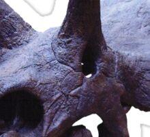 Ceratopsian Sticker