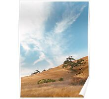Dry California Countryside Poster