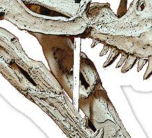 Raptor Sticker