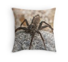 wolf spider Throw Pillow