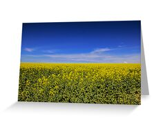 Canola Fields Burley Griffin Way  NSW  Greeting Card