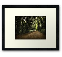 Forest path... Framed Print