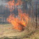 Spring burning by justbmac