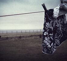 Hung out to dry by Nicola Smith