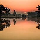 Reflections by J. Day