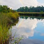 Rainbow Reflection by Jonicool