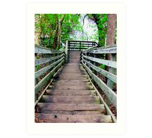 Stone Arch Stairs Art Print
