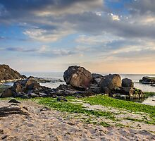 rocks and seaweed on sand coast of the sea by pellinni