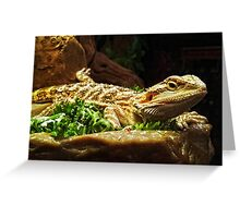 Pogona Greeting Card