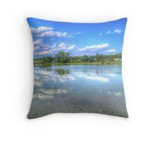 Mirrored Lake Throw Pillow