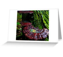 Large Red Tree Fungus Greeting Card