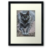 Zoe Loves the Camera! Framed Print