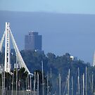 Bay Bridge and Transamerica Pyramid by Urso Chappell
