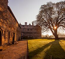 Merton College Sunrise by Steve Langton