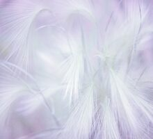 Dreams. Pastel Grasses by JennyRainbow