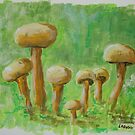 funghi acrylic sketch by Linda Ridpath