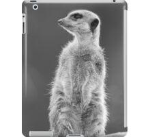 Meerkat (Suricata suricata) iPad Case/Skin