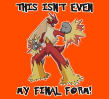 Not Even Blaziken's Final Form by Phox